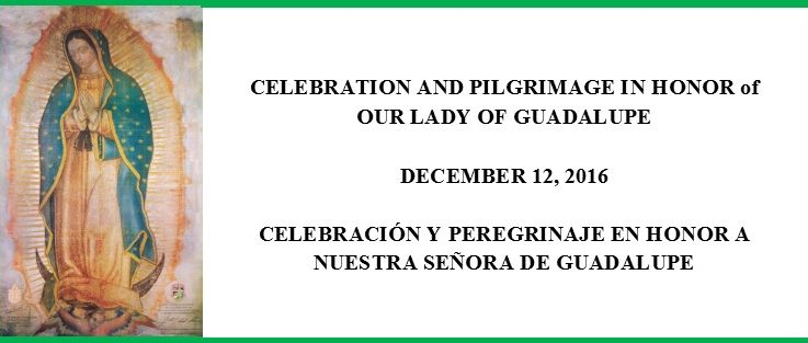 28th Annual Our Lady of Guadalupe Pilgrimage